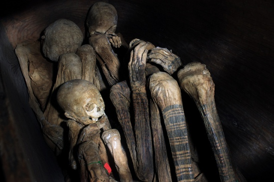 Ibaloi mummies, and an excellent view of some of their beautiful batok-style tattoos.